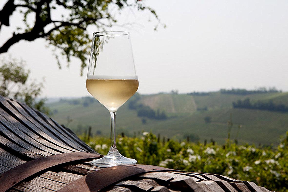 Vino bianco in calice